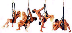 Love positions for sex swings